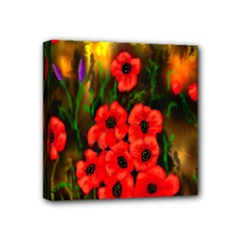 poppies 4x4 stretch